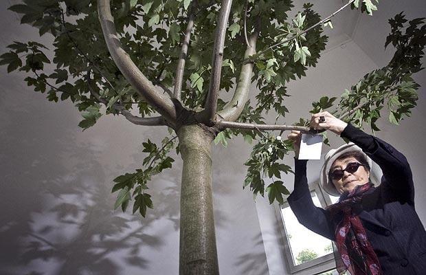 yoko-ono-wish-tree