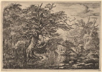 "Jacob van Ruisdael's <i>Forest Marsh with Travellers on a Bank</i> (1640s-1650s) emphasized the energy of the ""heroic"" tree in just left of center, precisely delineated foliage, while at the same time conveying the light that shimmers on the water that curves through the center."
