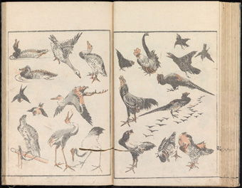 Two pages from Katsushika Hokusai's <i>Denshin Kaisu: Hokusai Manga</i> (<i>Transmitting the Spirit and Revealing the Form of Things: Random Drawings of Hokusai</i>), (1814) depict his sketches of various birds.